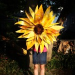 Friday Flower: Giant Sunflower