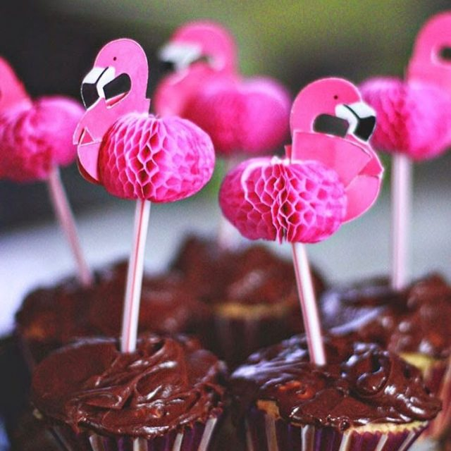 Chocolate goes better with flamingos facts