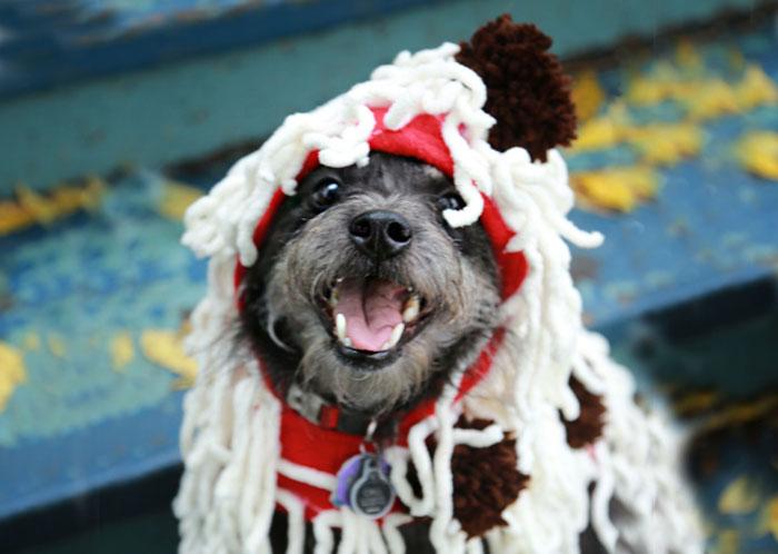 yarn-spaghetti-costume-rectabgle