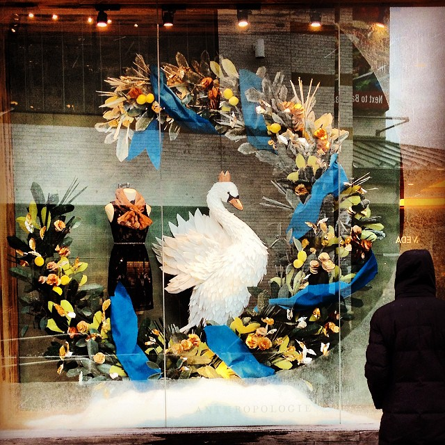 Swan lake windows at @Anthropologie. Stunning!