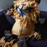 The Littlest Lion Costume