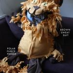 The Littlest Lion Costume