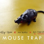 Practical Craft: Cruelty-Free, No-Mess, No-Touching Mouse Trap