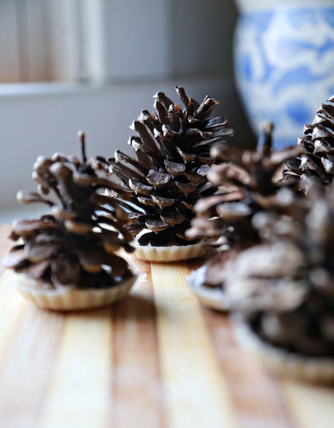 pinecones-682