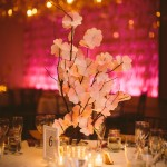 A Cherry Blossom Wedding in Washington DC