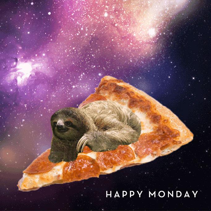pizza-sloth