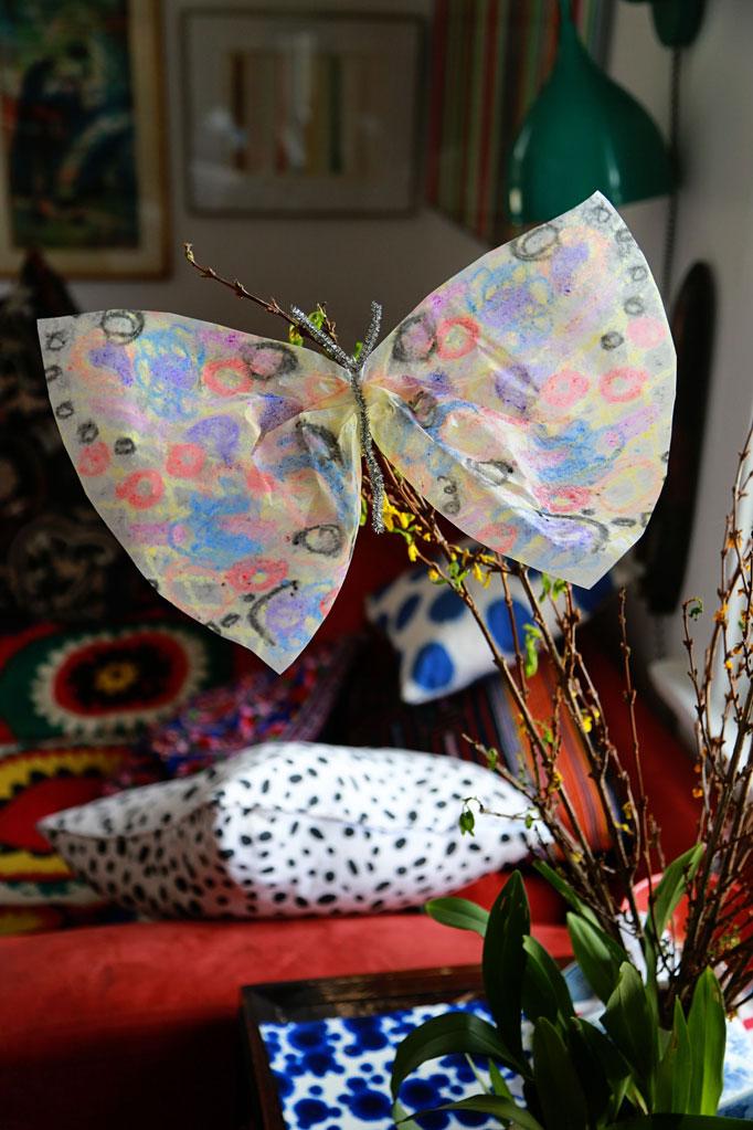1-butterfly-solo-682