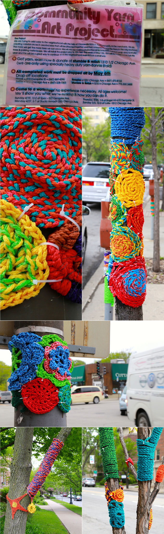 evanston-yarn-bomb-tree-circles-682