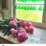 green-cup-instagram