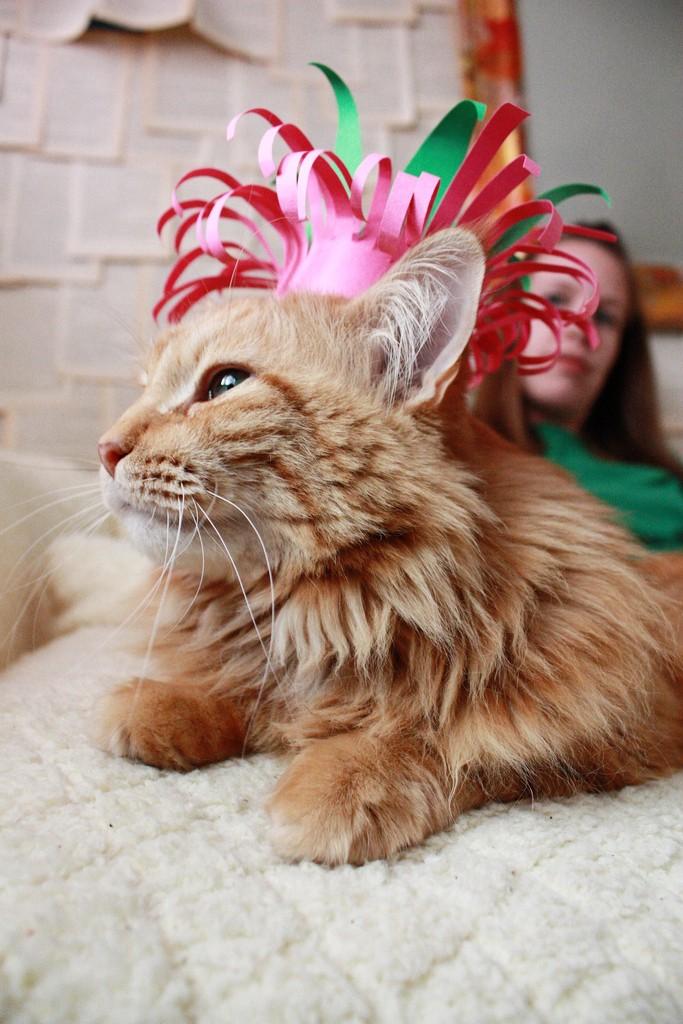 Lola birthday hat 682