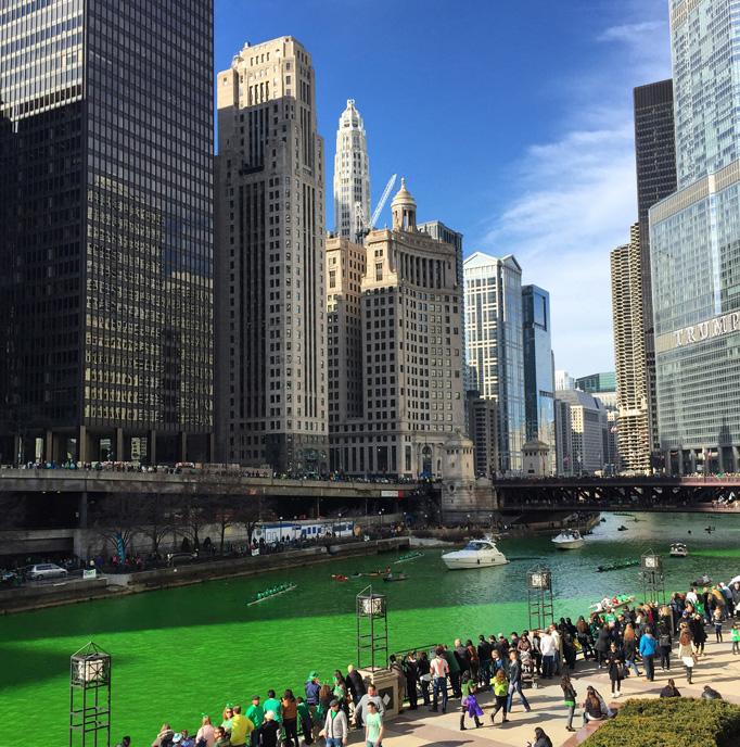 chicago-dye2