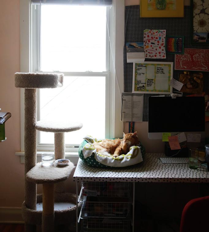 lola-bed-window