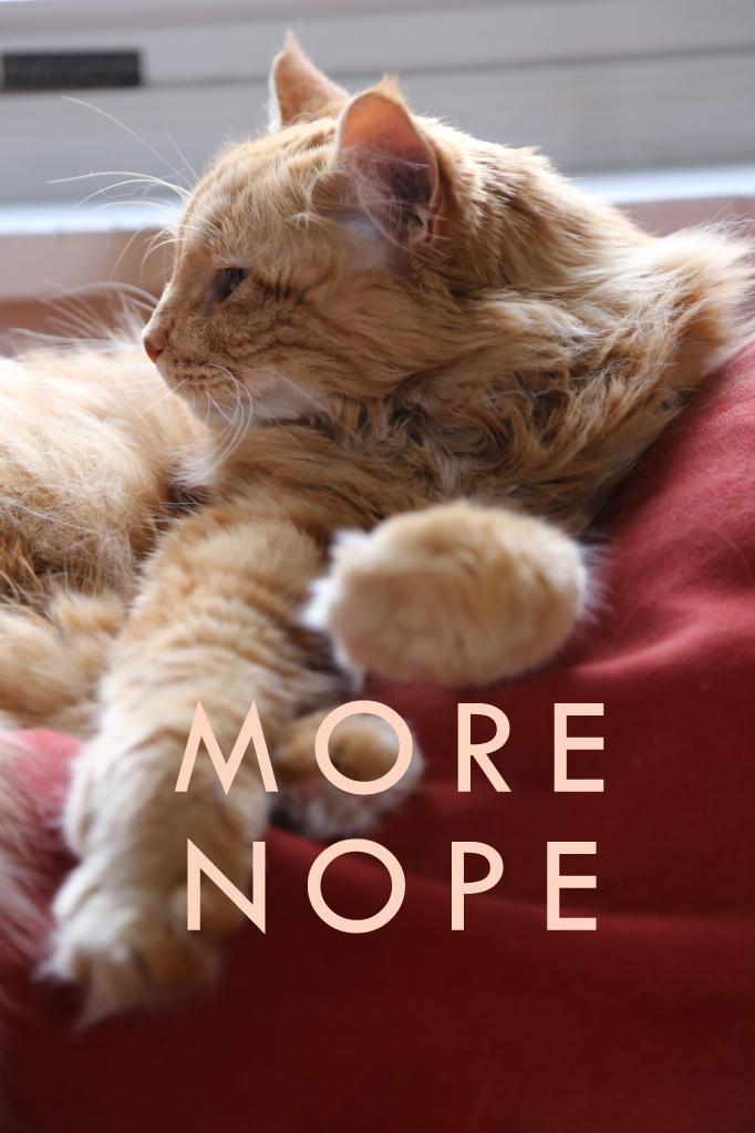 more-nope2