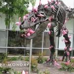 happymondaydinosaur