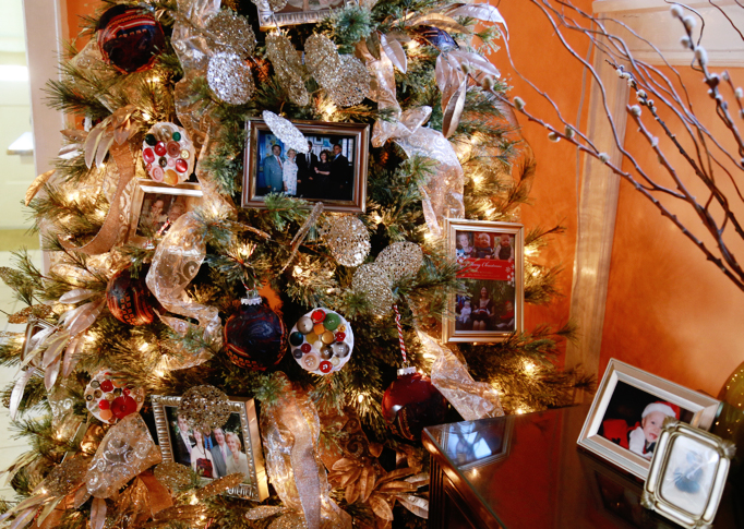 picture-frames-on-tree
